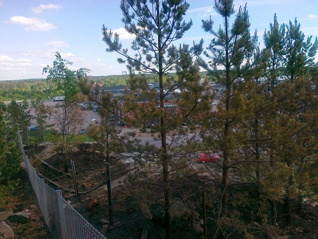 Nuoret leikkineet tulella kallion päällä ja maastoa alkoi palaa. Pelastuslaitos sai palon sammutetuksi ennen, kuin se levisi metsään.