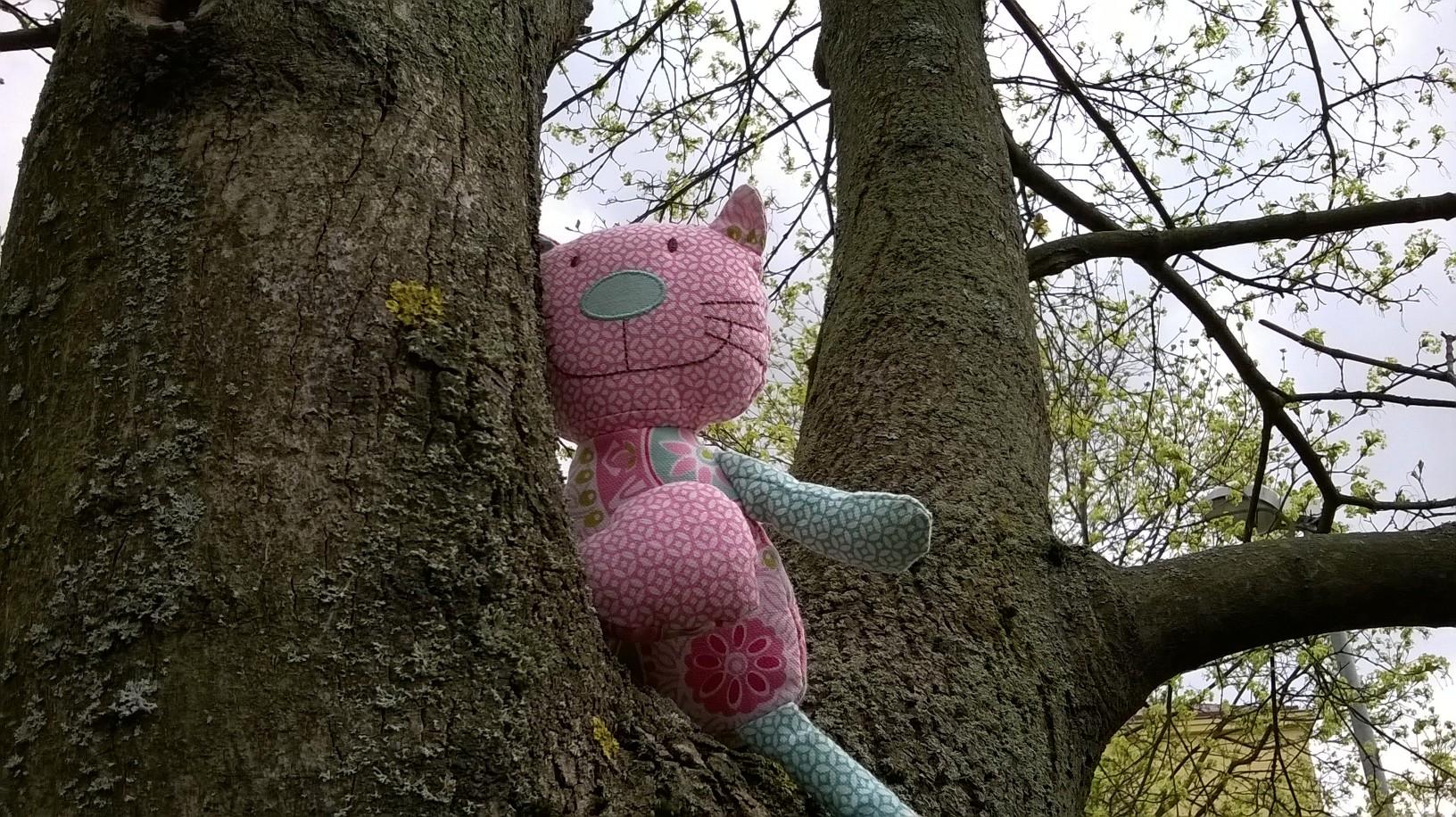 Tämä kissa ei ehkä omin avuin puusta alas pääse, mutta muut Sakkeukset löytävät lähes aina itse tiensä alas puusta.